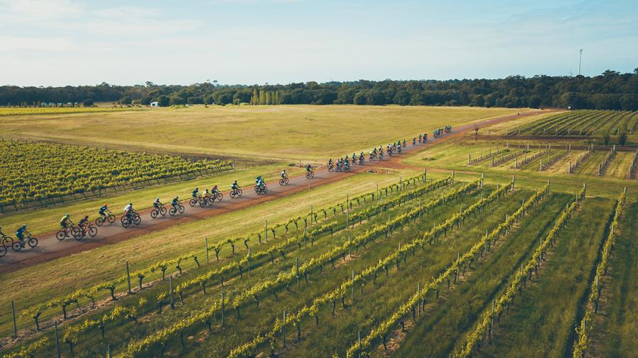 Beautiful vineyards of the Margaret River region 2da345f6b